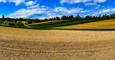 Doskonalenie działań administracji regionalnej odpowiedzialnej za scalenia gruntów w Małopolsce