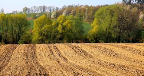 W MRiRW o wprowadzeniu w życie kompleksowego urządzania obszarów wiejskich