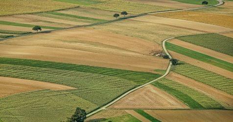 Szkolenie dotyczące nowoczesnego podejścia do scaleń gruntów
