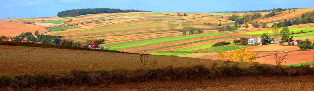 rozłóg gruntów